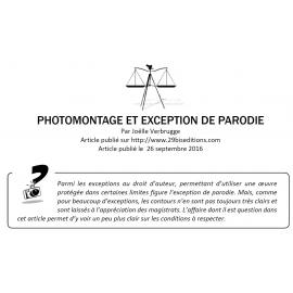 Photomontage et exception de parodie