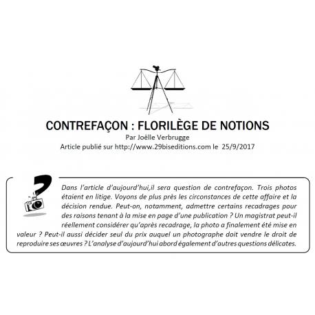 CONTREFAÇON : FLORILÈGE DE NOTIONS