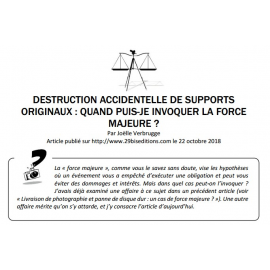 DESTRUCTION ACCIDENTELLE DE SUPPORTS ORIGINAUX : QUAND PUIS-JE INVOQUER LA FORCE MAJEURE ?