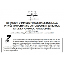 DIFFUSION D'IMAGES PRISES DANS DES LIEUX PRIVÉS : IMPORTANCE DU FONDEMENT JURIDIQUE ET DE LA FORMULATION ADOPTÉE