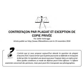 CONTREFAÇON PAR PLAGIAT ET EXCEPTION DE COPIE PRIVÉE